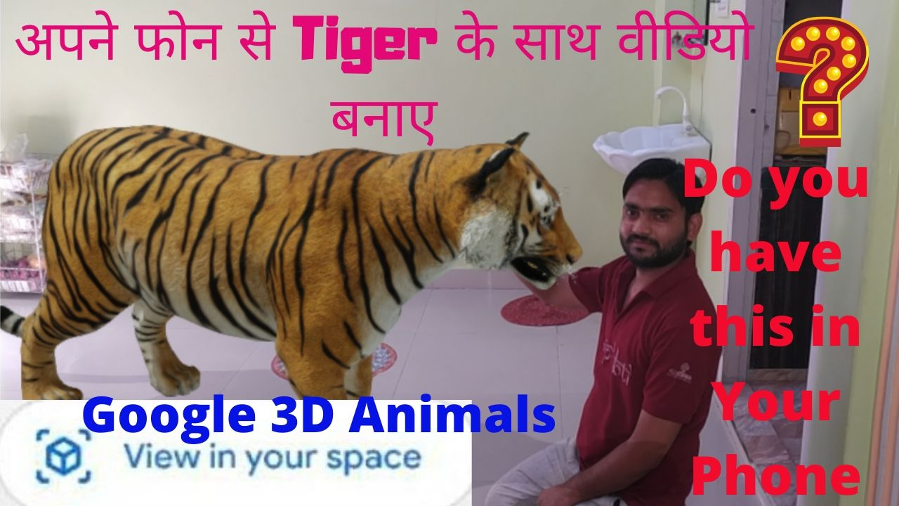 Create Video With Animals in 3D